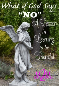 "What if God Says, ""No?"" A lesson in Being Thankful for What I Already Have"