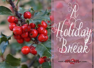 A Holiday Break…