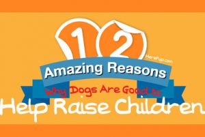 3 Reasons to Have a Family Dog – Guest Post by Jamie from Here Pup